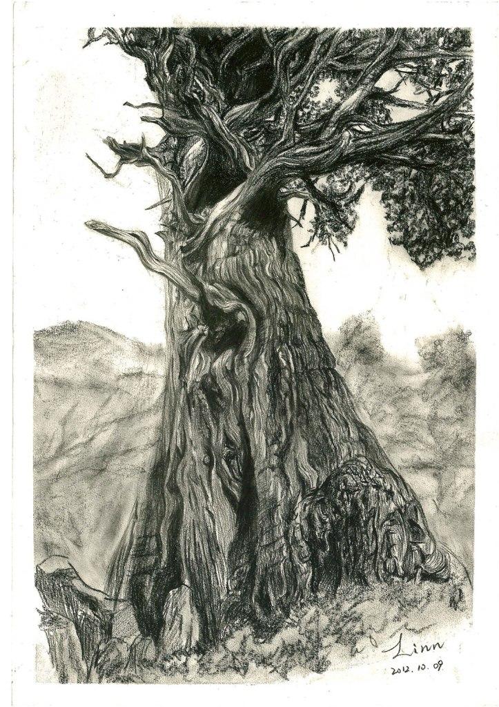 hand-drawing-2